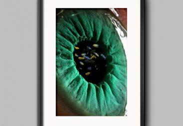 Eye-Sea