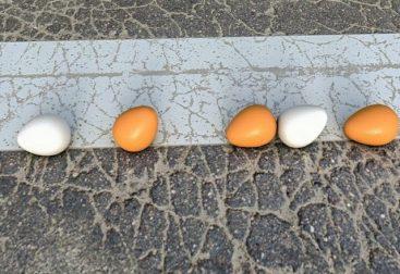 Falling-Eggs