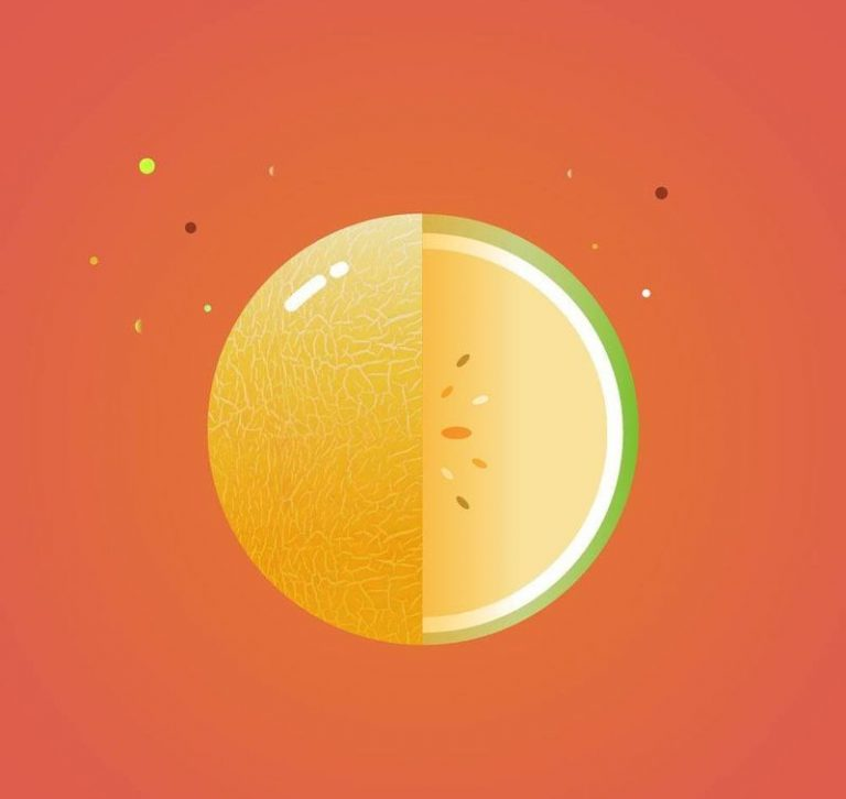 Melon-Planet