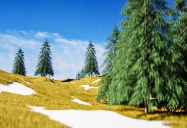3D-landscape
