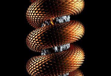Snake-Loop